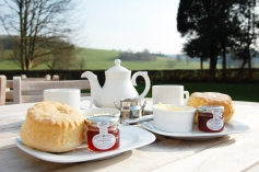 Cream Tea at West Dean Gardenslted