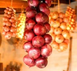 Storing onions, West Dean Gardens